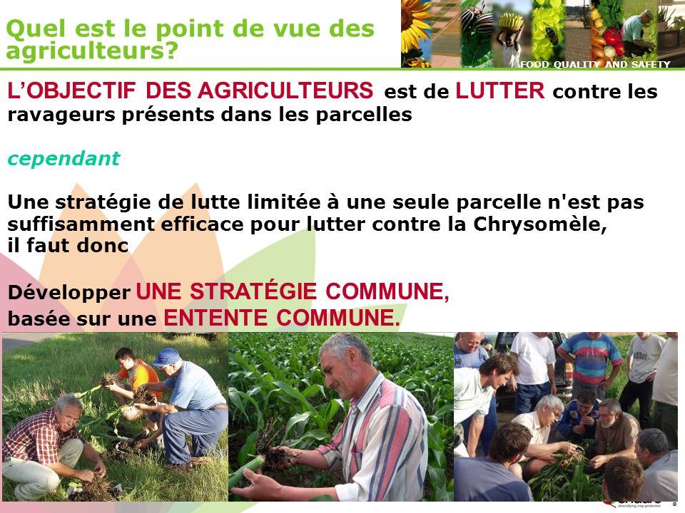 © ENDURE, February 2007 FOOD QUALITY AND SAFETY © ENDURE, February 2007 FOOD QUALITY AND SAFETY LOBJECTIF DES AGRICULTEURS est de LUTTER contre les ra