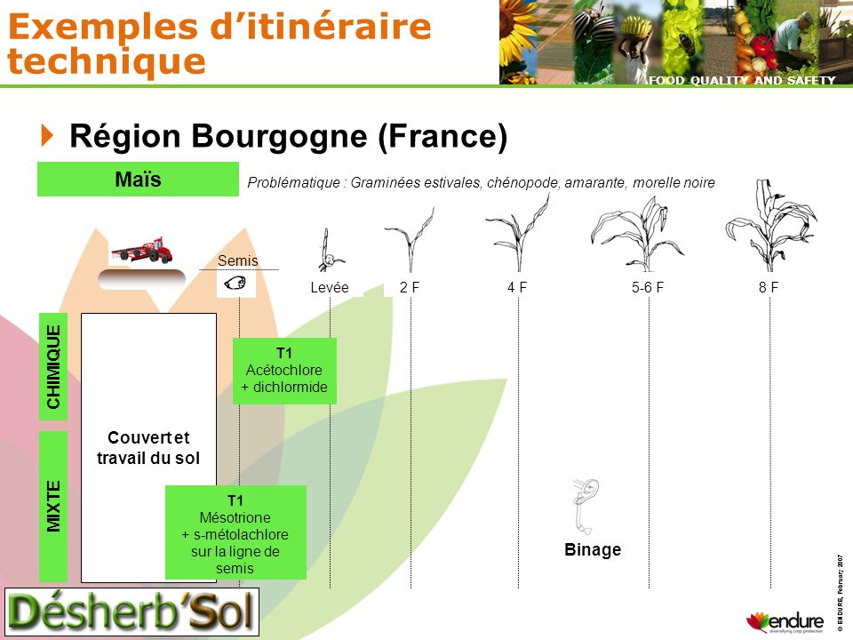 © ENDURE, February 2007 FOOD QUALITY AND SAFETY © ENDURE, February 2007 FOOD QUALITY AND SAFETY Exemples ditinéraire technique Région Bourgogne (Franc