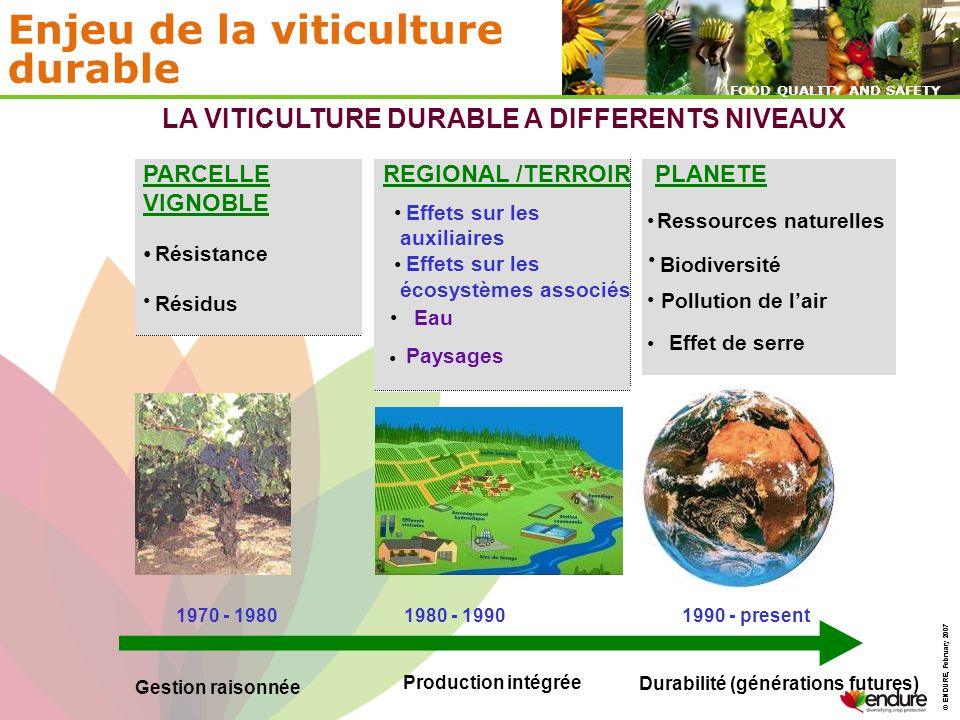 © ENDURE, February 2007 FOOD QUALITY AND SAFETY © ENDURE, February 2007 FOOD QUALITY AND SAFETY Enjeu de la viticulture durable PARCELLE VIGNOBLE Rési