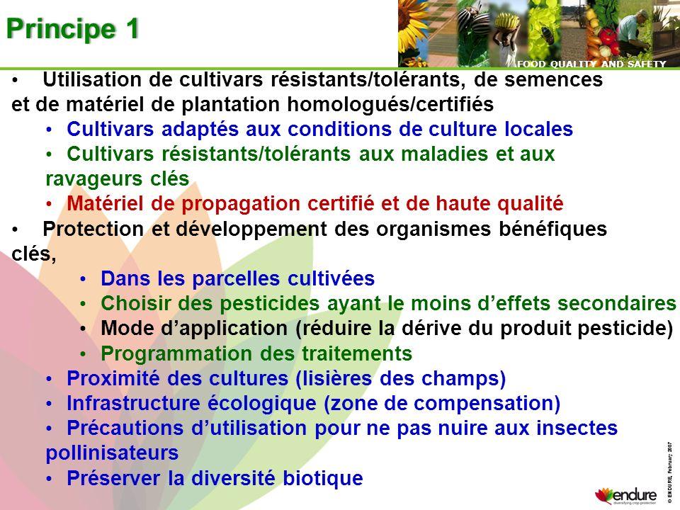 © ENDURE, February 2007 FOOD QUALITY AND SAFETY © ENDURE, February 2007 FOOD QUALITY AND SAFETY Principe 1Principe 1 Utilisation de cultivars résistan
