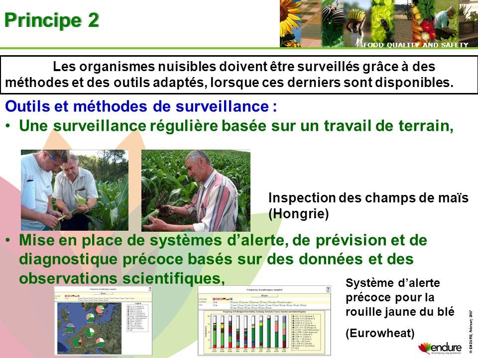 © ENDURE, February 2007 FOOD QUALITY AND SAFETY © ENDURE, February 2007 FOOD QUALITY AND SAFETY Principe 2Principe 2 Outils et méthodes de surveillanc