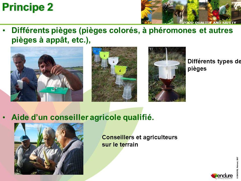 © ENDURE, February 2007 FOOD QUALITY AND SAFETY © ENDURE, February 2007 FOOD QUALITY AND SAFETY Différents pièges (pièges colorés, à phéromones et aut