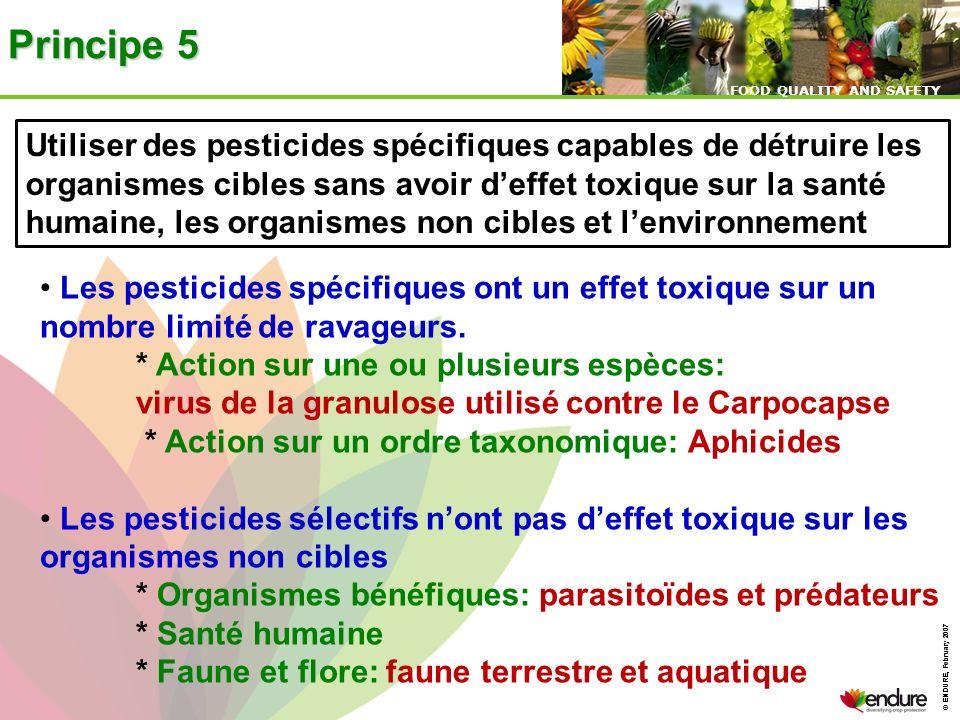 © ENDURE, February 2007 FOOD QUALITY AND SAFETY © ENDURE, February 2007 FOOD QUALITY AND SAFETY Principe 5 Utiliser des pesticides spécifiques capable