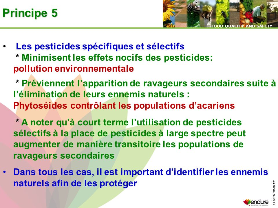 © ENDURE, February 2007 FOOD QUALITY AND SAFETY © ENDURE, February 2007 FOOD QUALITY AND SAFETY Principe 5 Les pesticides spécifiques et sélectifs * M
