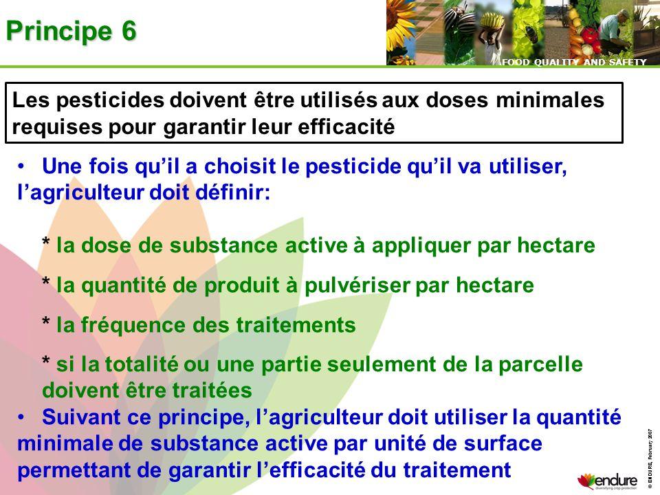 © ENDURE, February 2007 FOOD QUALITY AND SAFETY © ENDURE, February 2007 FOOD QUALITY AND SAFETY Principe 6 Les pesticides doivent être utilisés aux do