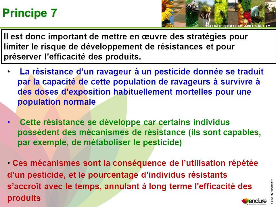© ENDURE, February 2007 FOOD QUALITY AND SAFETY © ENDURE, February 2007 FOOD QUALITY AND SAFETY Principe 7 Il est donc important de mettre en œuvre de