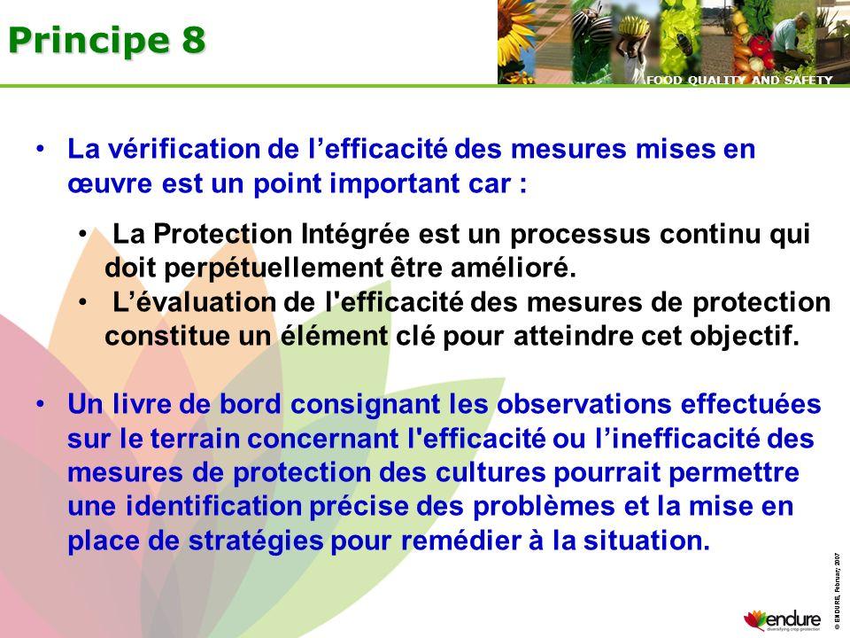 © ENDURE, February 2007 FOOD QUALITY AND SAFETY © ENDURE, February 2007 FOOD QUALITY AND SAFETY Principe 8 La vérification de lefficacité des mesures