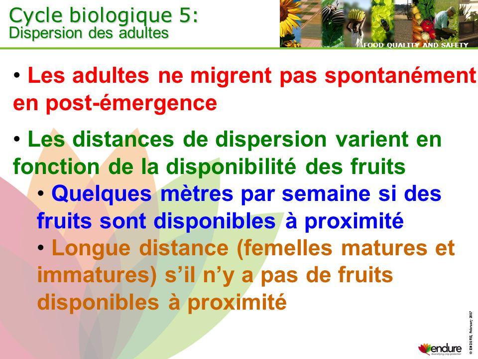 © ENDURE, February 2007 FOOD QUALITY AND SAFETY © ENDURE, February 2007 FOOD QUALITY AND SAFETY Les adultes ne migrent pas spontanément en post-émerge