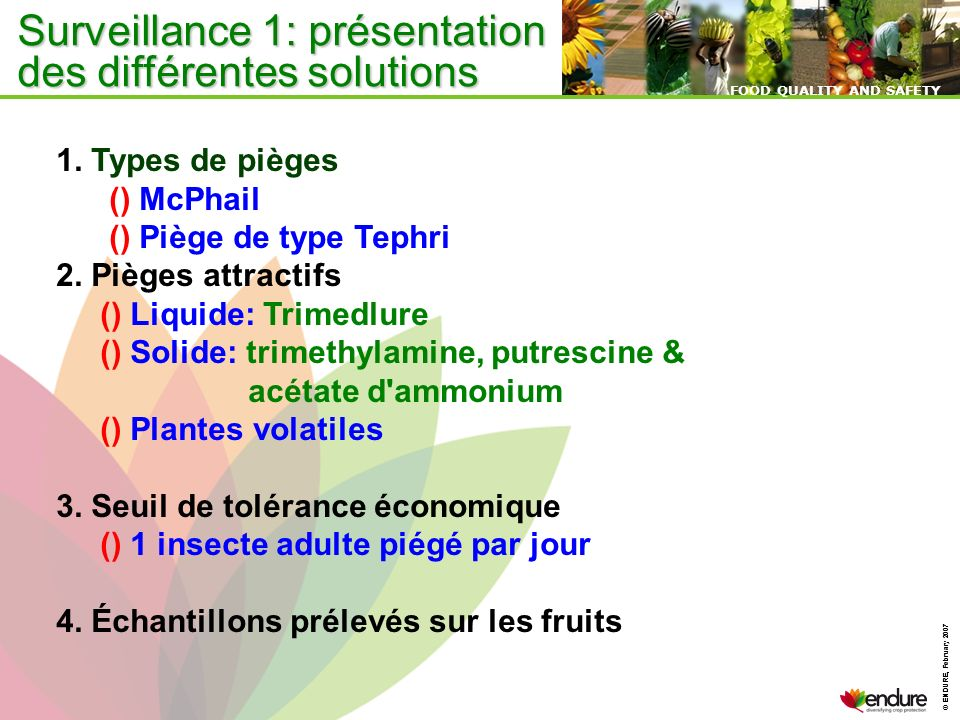 © ENDURE, February 2007 FOOD QUALITY AND SAFETY © ENDURE, February 2007 FOOD QUALITY AND SAFETY Surveillance 1: présentation des différentes solutions 1.