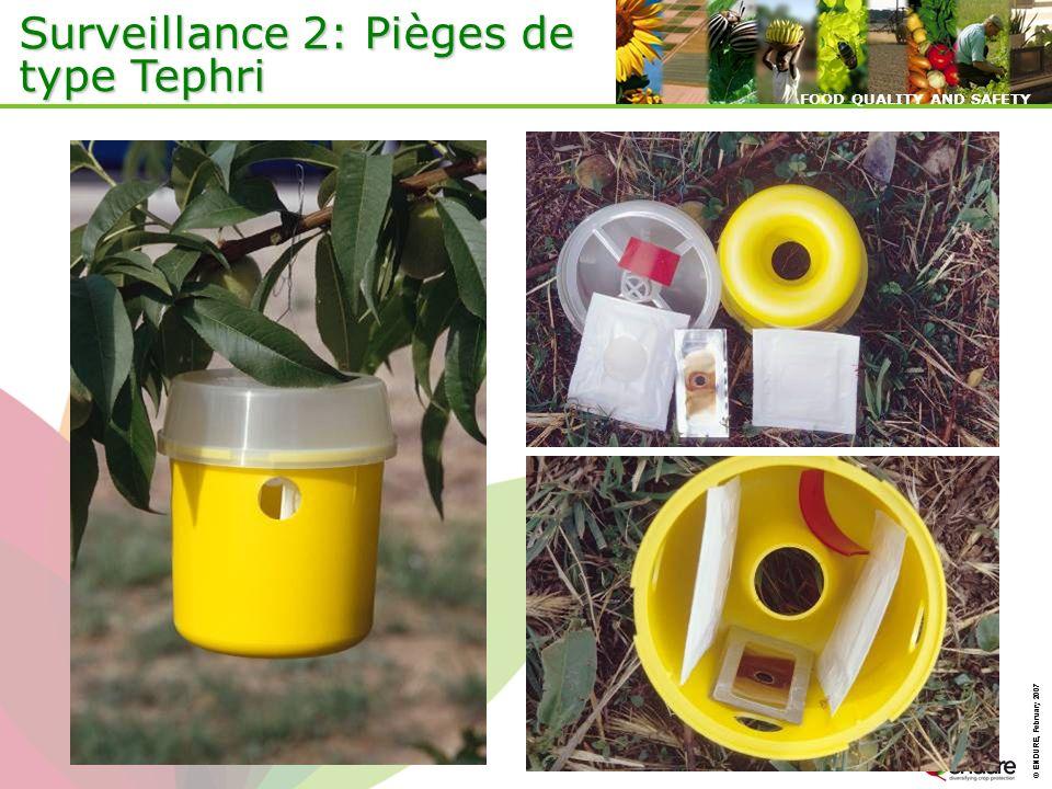 © ENDURE, February 2007 FOOD QUALITY AND SAFETY © ENDURE, February 2007 FOOD QUALITY AND SAFETY Surveillance 2: Pièges de type Tephri