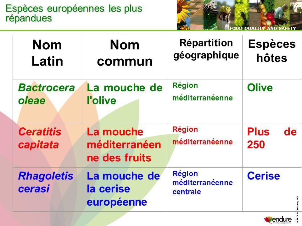 © ENDURE, February 2007 FOOD QUALITY AND SAFETY © ENDURE, February 2007 FOOD QUALITY AND SAFETY Espèces européennes les plus répandues Nom Latin Nom c