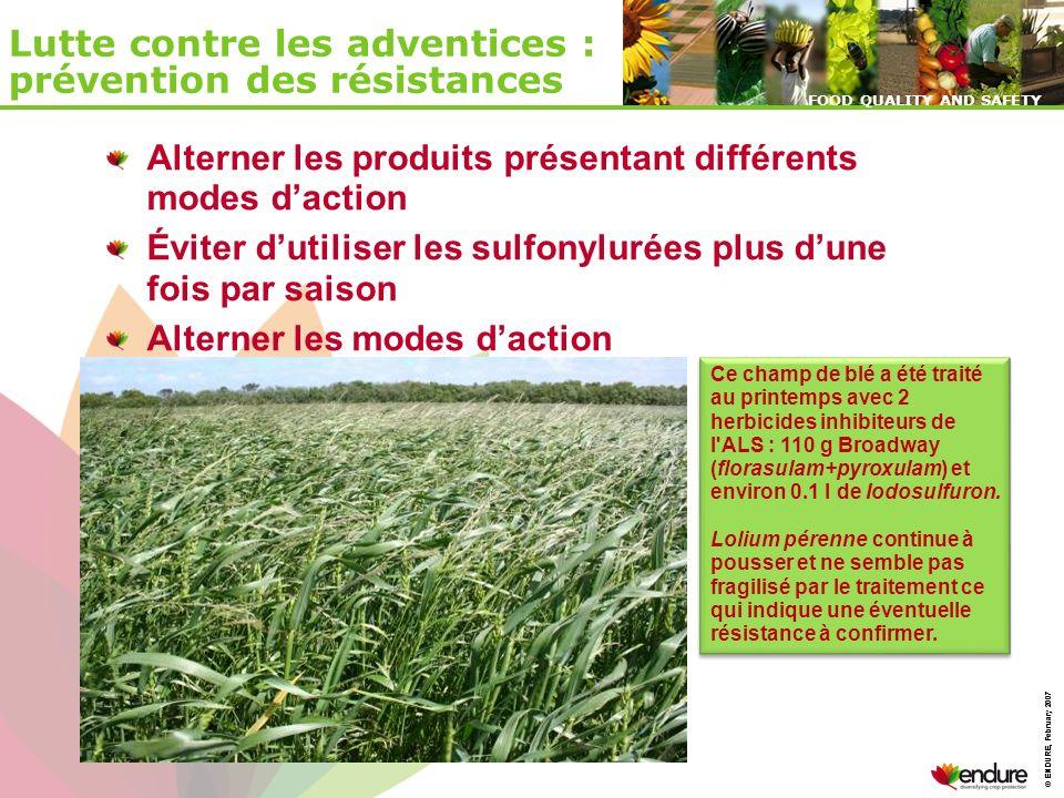 © ENDURE, February 2007 FOOD QUALITY AND SAFETY © ENDURE, February 2007 FOOD QUALITY AND SAFETY Lutte contre les adventices : prévention des résistanc