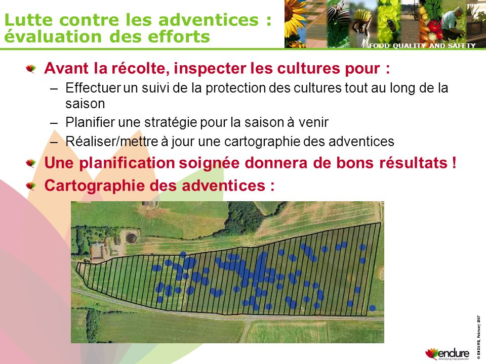 © ENDURE, February 2007 FOOD QUALITY AND SAFETY © ENDURE, February 2007 FOOD QUALITY AND SAFETY Lutte contre les adventices : évaluation des efforts A