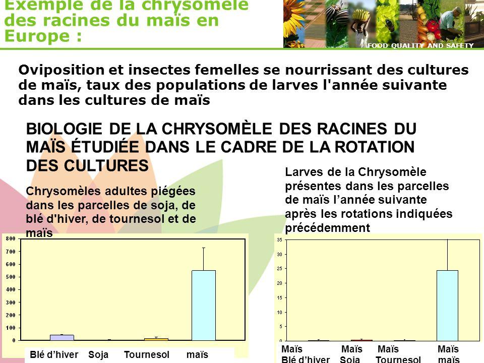 © ENDURE, February 2007 FOOD QUALITY AND SAFETY © ENDURE, February 2007 FOOD QUALITY AND SAFETY Chrysomèles adultes piégées dans les parcelles de soja
