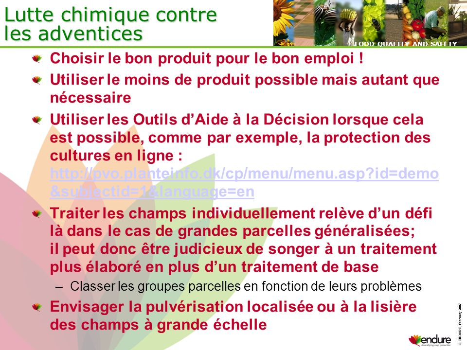 © ENDURE, February 2007 FOOD QUALITY AND SAFETY © ENDURE, February 2007 FOOD QUALITY AND SAFETY Lutte chimique contre les adventices Choisir le bon pr