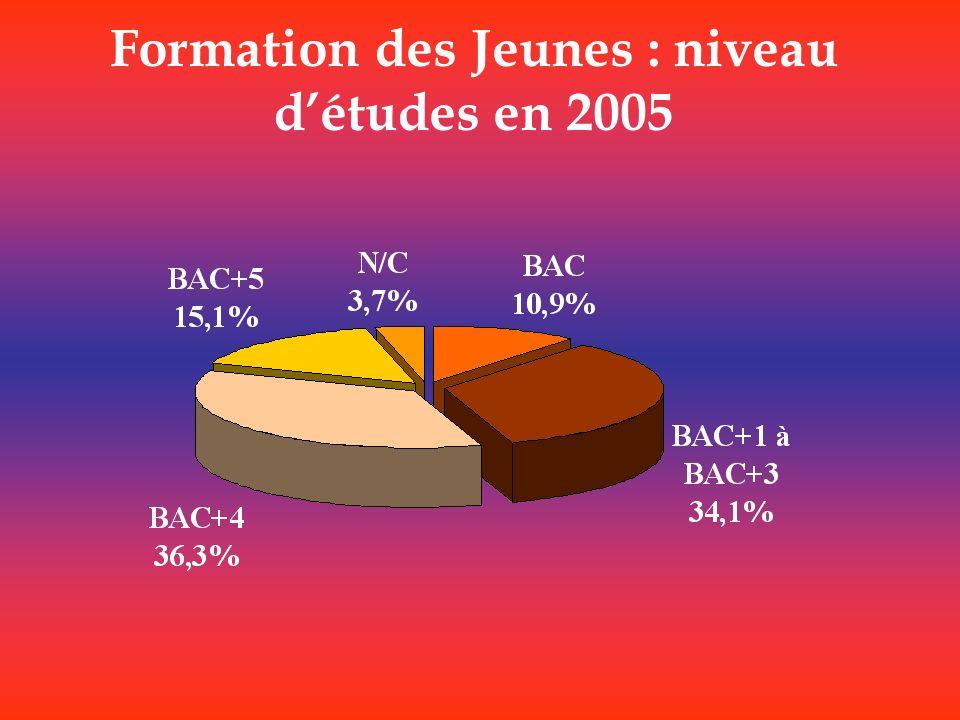Formation des Jeunes : niveau détudes en 2005