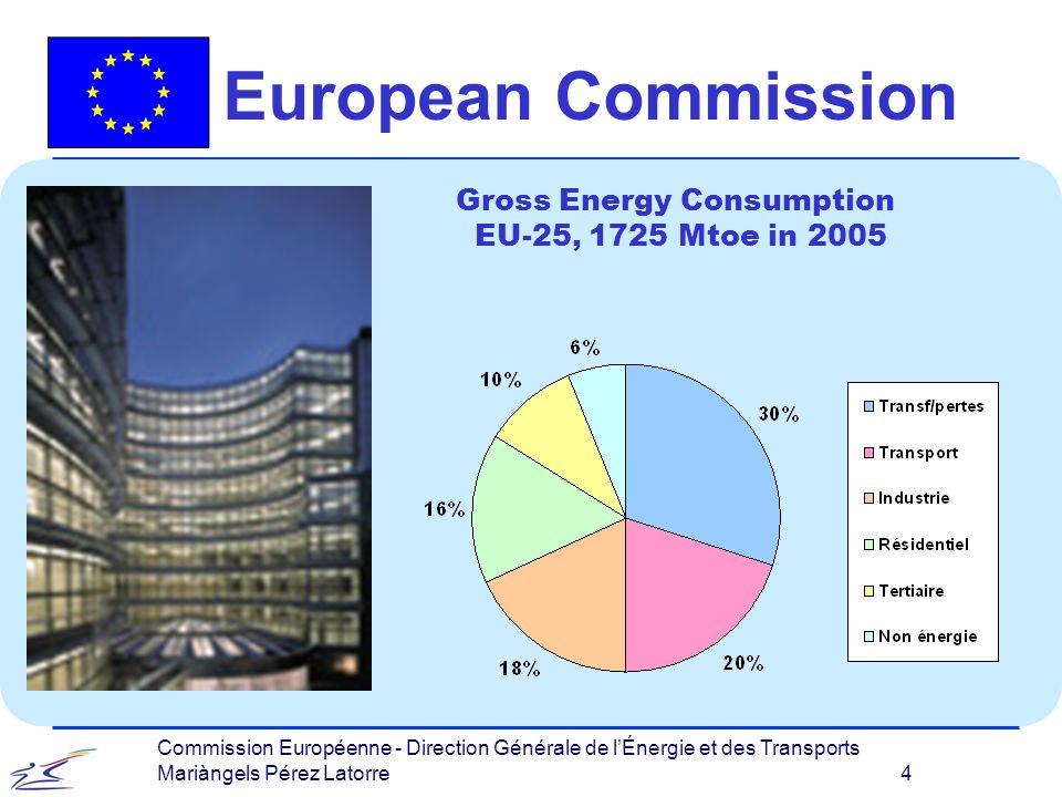 Commission Européenne - Direction Générale de lÉnergie et des Transports Mariàngels Pérez Latorre 4 European Commission Gross Energy Consumption EU-25, 1725 Mtoe in 2005