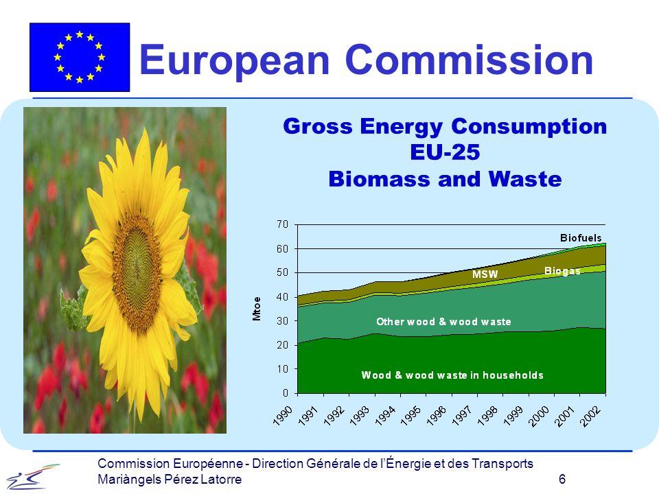 Commission Européenne - Direction Générale de lÉnergie et des Transports Mariàngels Pérez Latorre 6 European Commission Gross Energy Consumption EU-25 Biomass and Waste