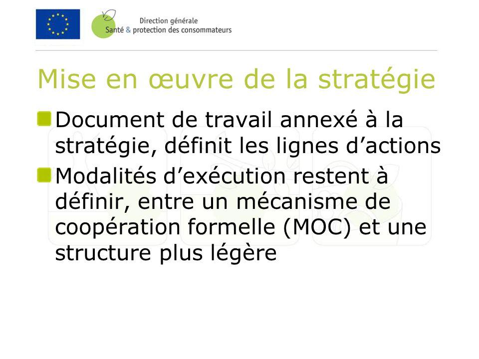 Mise en œuvre de la stratégie Document de travail annexé à la stratégie, définit les lignes dactions Modalités dexécution restent à définir, entre un mécanisme de coopération formelle (MOC) et une structure plus légère