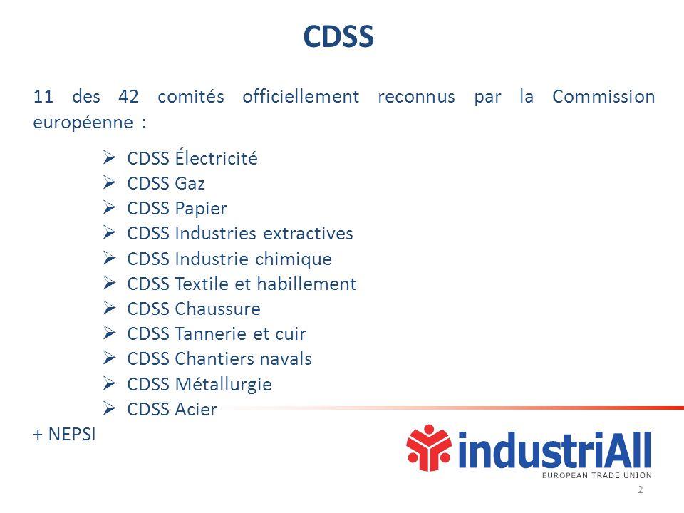 CDSS 11 des 42 comités officiellement reconnus par la Commission européenne : CDSS Électricité CDSS Gaz CDSS Papier CDSS Industries extractives CDSS Industrie chimique CDSS Textile et habillement CDSS Chaussure CDSS Tannerie et cuir CDSS Chantiers navals CDSS Métallurgie CDSS Acier + NEPSI 2