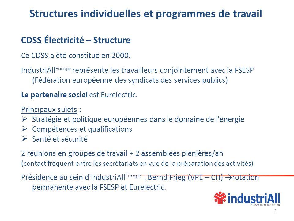 S tructures individuelles et programmes de travail CDSS Électricité – Structure Ce CDSS a été constitué en 2000. IndustriAll Europe représente les tra