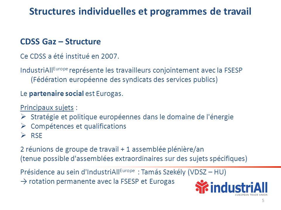 Structures individuelles et programmes de travail CDSS Gaz – Structure Ce CDSS a été institué en 2007. IndustriAll Europe représente les travailleurs