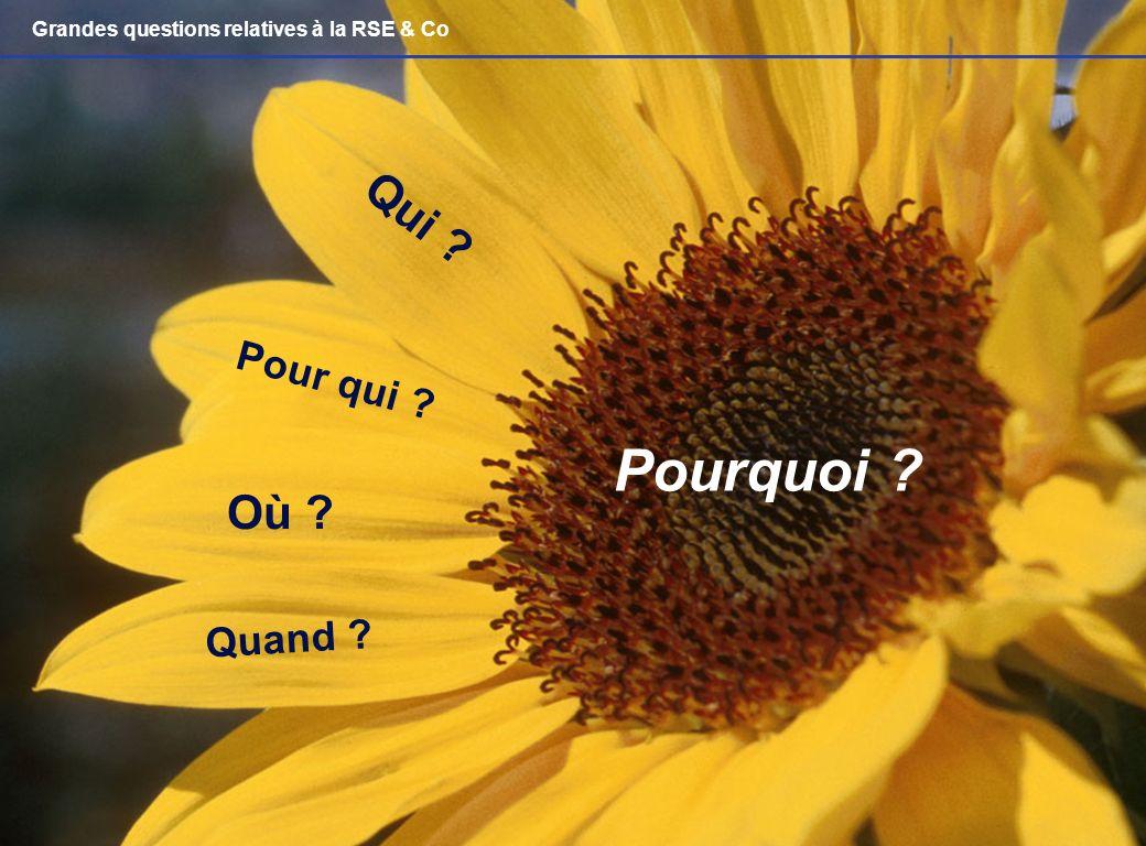 Management responsable : questions éthiques – Laurent Ledoux – 14/04/07 32 Pourquoi ? Qui ? Où ? Pour qui ? Quand ? Grandes questions relatives à la R