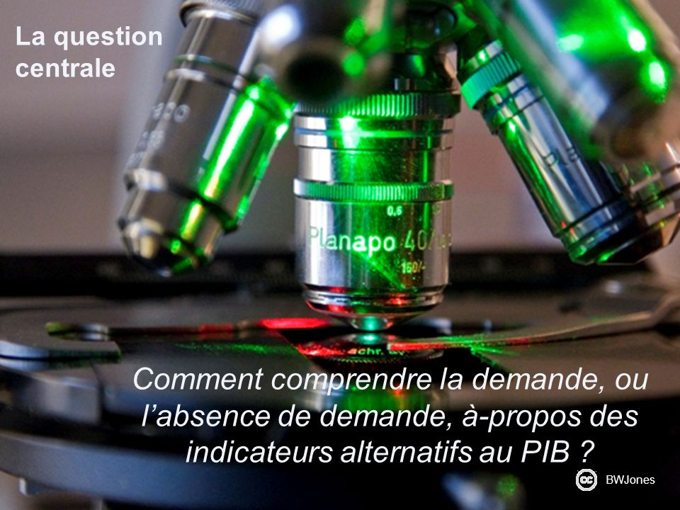 La question centrale Comment comprendre la demande, ou labsence de demande, à-propos des indicateurs alternatifs au PIB ? BWJones
