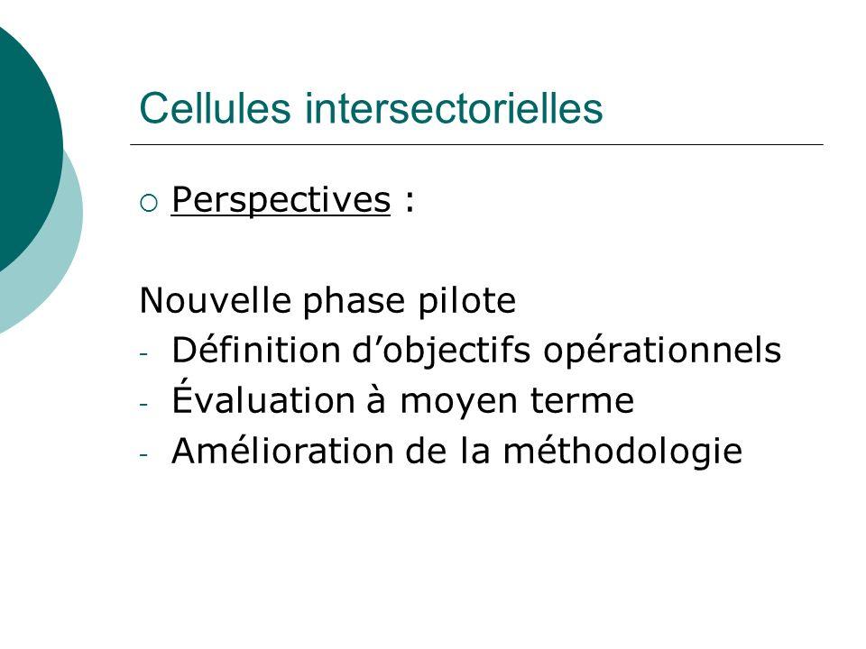 Cellules intersectorielles Perspectives : Nouvelle phase pilote - Définition dobjectifs opérationnels - Évaluation à moyen terme - Amélioration de la