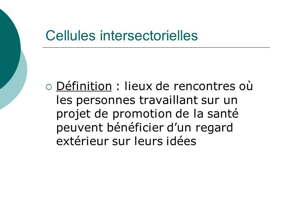 Cellules intersectorielles Acteurs : promoteurs de projets dune part et élus, professionnels et habitants dautre part (couvrant différentes thématiques : environnement, culture, économie et social)