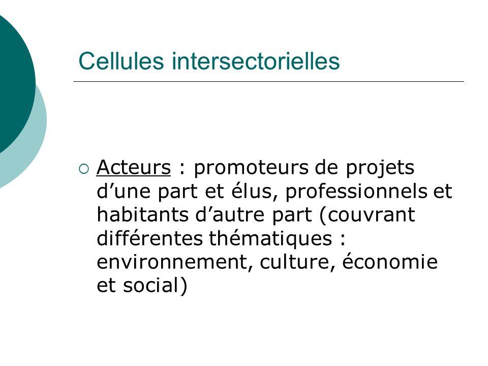 Cellules intersectorielles Acteurs : promoteurs de projets dune part et élus, professionnels et habitants dautre part (couvrant différentes thématique