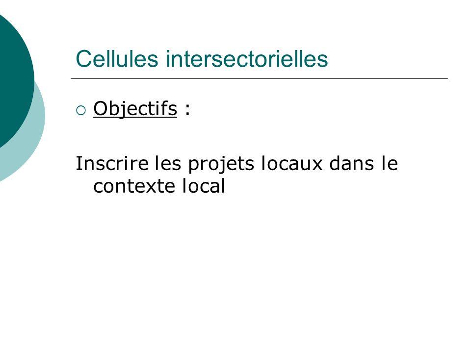 Cellules intersectorielles Objectifs : Inscrire les projets locaux dans le contexte local