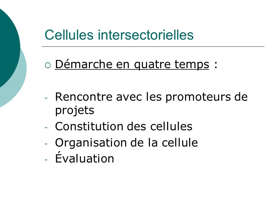 Cellules intersectorielles Démarche en quatre temps : - Rencontre avec les promoteurs de projets - Constitution des cellules - Organisation de la cell