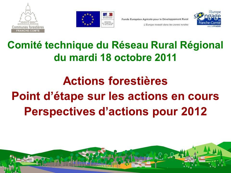 Actions forestières Point détape sur les actions en cours Perspectives dactions pour 2012 Comité technique du Réseau Rural Régional du mardi 18 octobre 2011