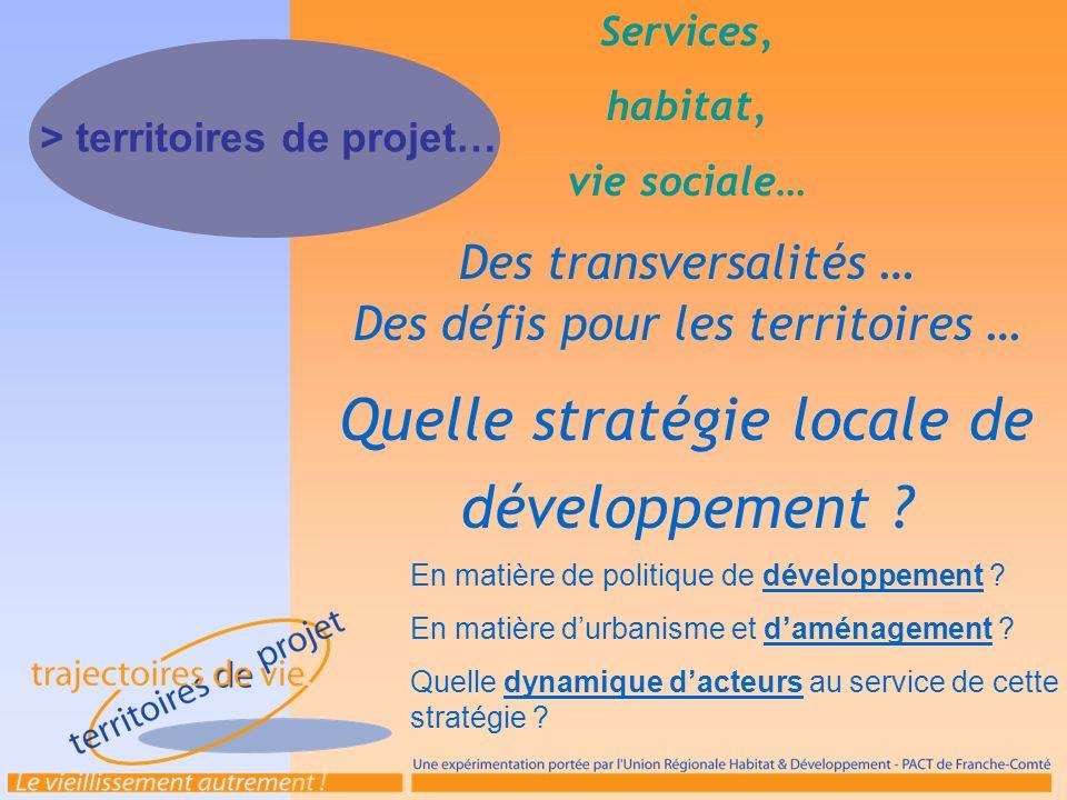 Services, habitat, vie sociale… Des transversalités … Des défis pour les territoires … Quelle stratégie locale de développement ? En matière de politi