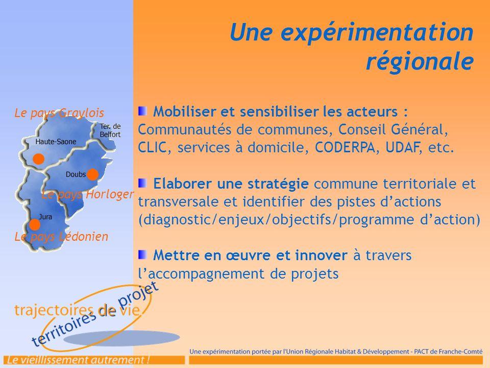 Une expérimentation régionale Mobiliser et sensibiliser les acteurs : Communautés de communes, Conseil Général, CLIC, services à domicile, CODERPA, UD