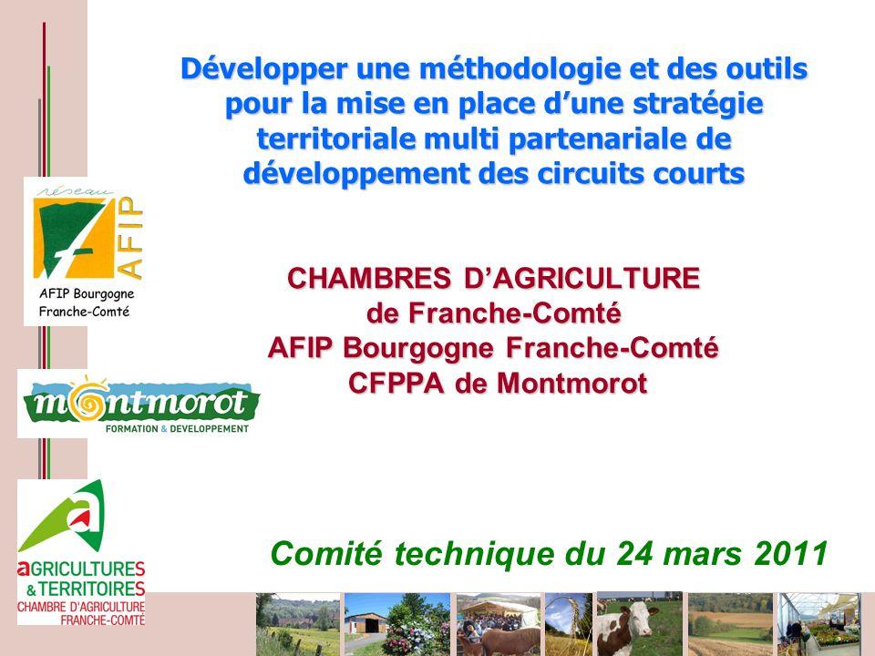 CAUE de Haute Saône Développer une méthodologie et des outils pour la mise en place dune stratégie territoriale multi partenariale de développement de