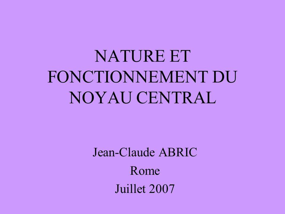 NATURE ET FONCTIONNEMENT DU NOYAU CENTRAL Jean-Claude ABRIC Rome Juillet 2007