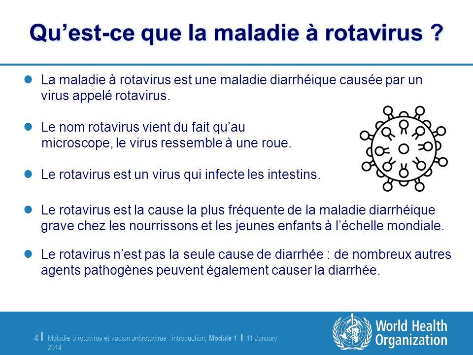 Maladie à rotavirus et vaccin antirotavirus : introduction, Module 1 | 11 January 2014 11 January 2014 4 |4 | La maladie à rotavirus est une maladie d