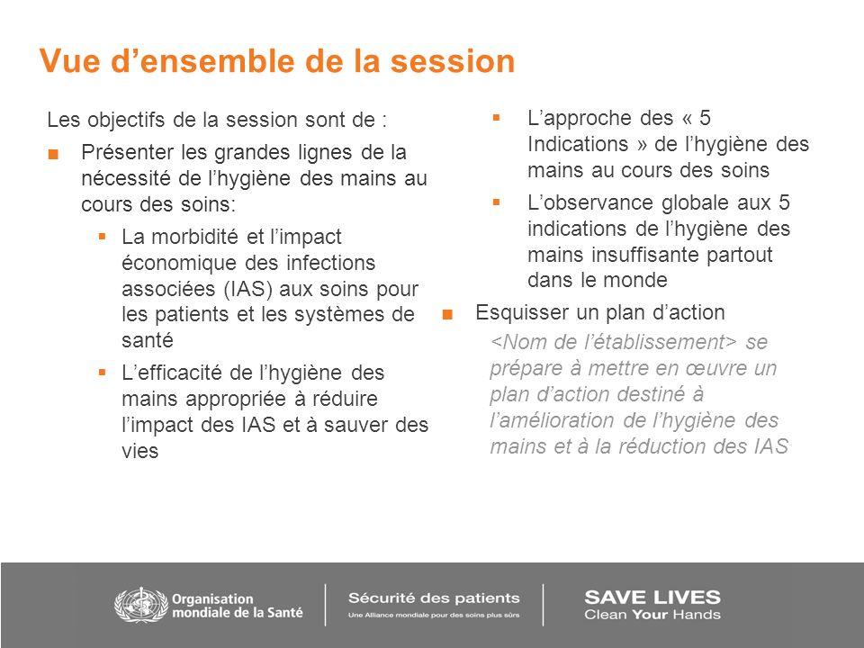 Vue densemble de la session Les objectifs de la session sont de : Présenter les grandes lignes de la nécessité de lhygiène des mains au cours des soin