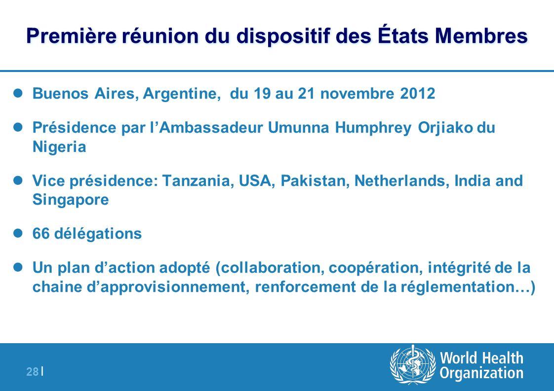 28 | Première réunion du dispositif des États Membres Buenos Aires, Argentine, du 19 au 21 novembre 2012 Présidence par lAmbassadeur Umunna Humphrey O