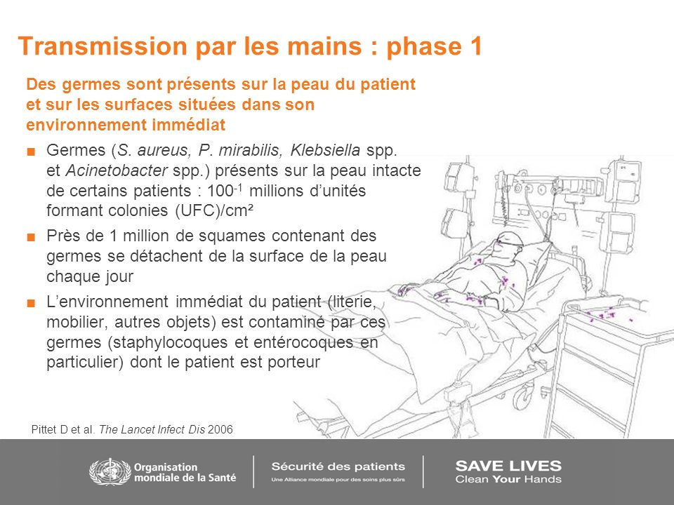 Transmission par les mains : phase 1 Des germes sont présents sur la peau du patient et sur les surfaces situées dans son environnement immédiat Germe