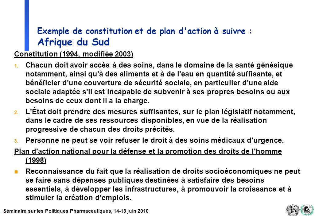 Séminaire sur les Politiques Pharmaceutiques, 14-18 juin 2010 Exemple de constitution et de plan d'action à suivre : Afrique du Sud Constitution (1994