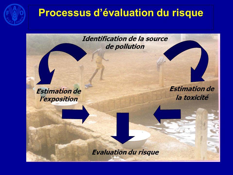 Processus dévaluation du risque Identification de la source de pollution Estimation de lexposition Estimation de la toxicité Evaluation du risque