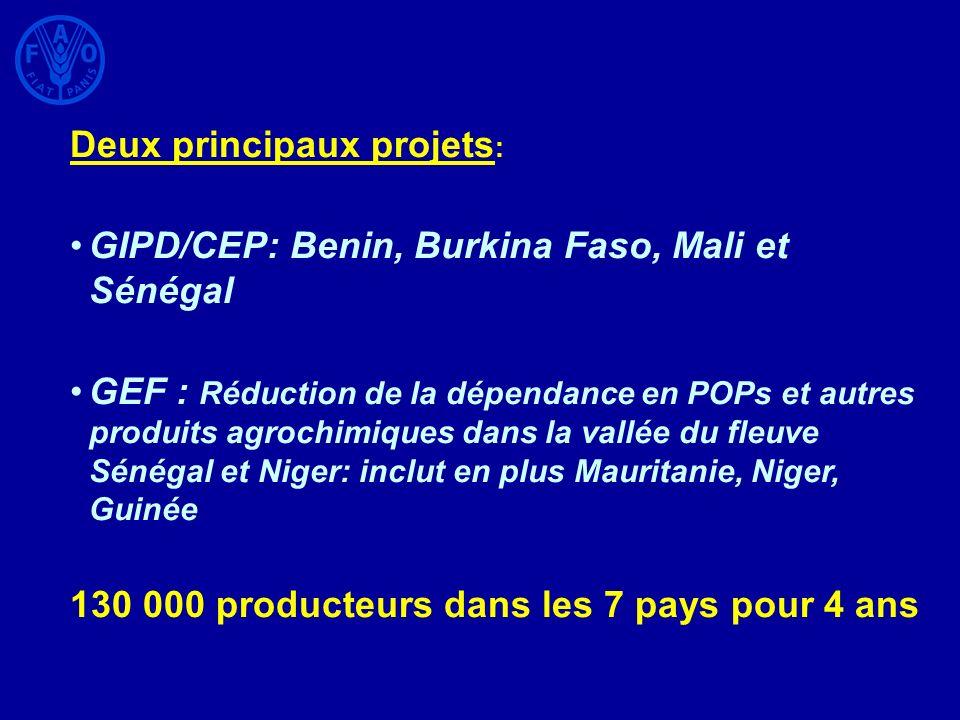 Deux principaux projets : GIPD/CEP: Benin, Burkina Faso, Mali et Sénégal GEF : Réduction de la dépendance en POPs et autres produits agrochimiques dan