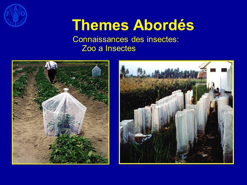Themes Abordés Connaissances des insectes: Zoo a Insectes