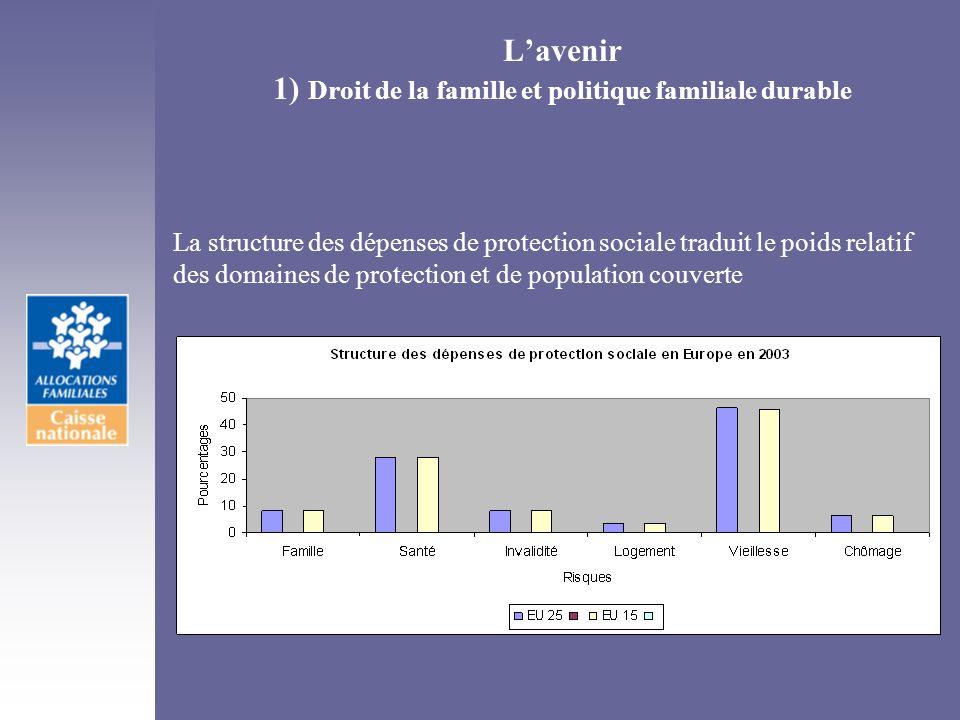 Lavenir 1) Droit de la famille et politique familiale durable La structure des dépenses de protection sociale traduit le poids relatif des domaines de