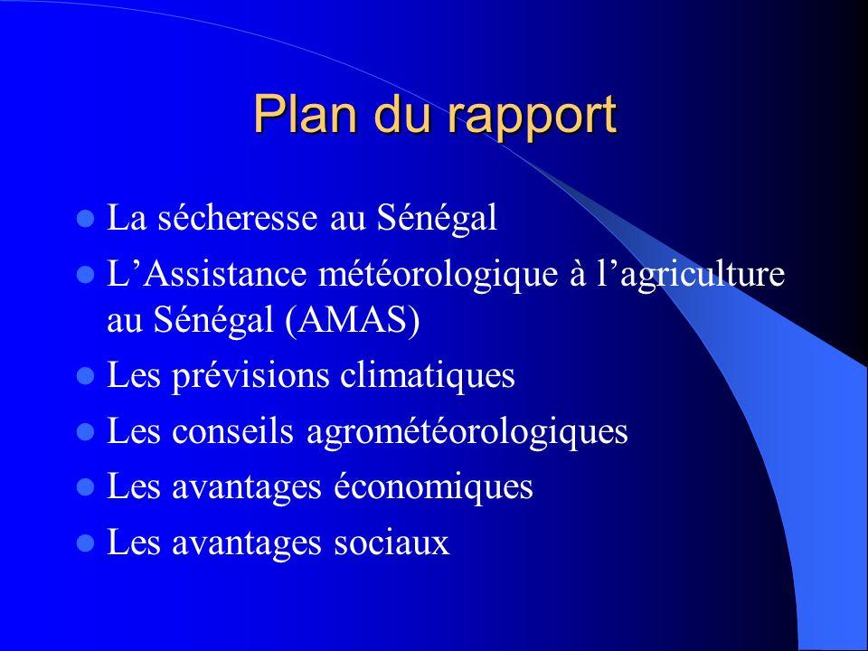 Plan du rapport La sécheresse au Sénégal LAssistance météorologique à lagriculture au Sénégal (AMAS) Les prévisions climatiques Les conseils agrométéo