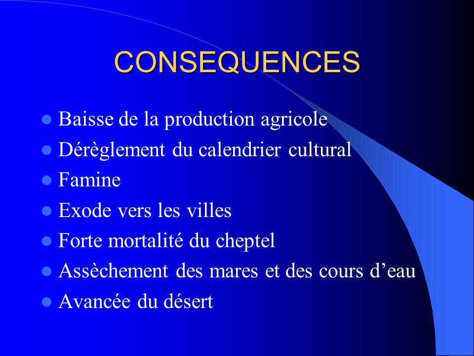 CONSEQUENCES Baisse de la production agricole Dérèglement du calendrier cultural Famine Exode vers les villes Forte mortalité du cheptel Assèchement d