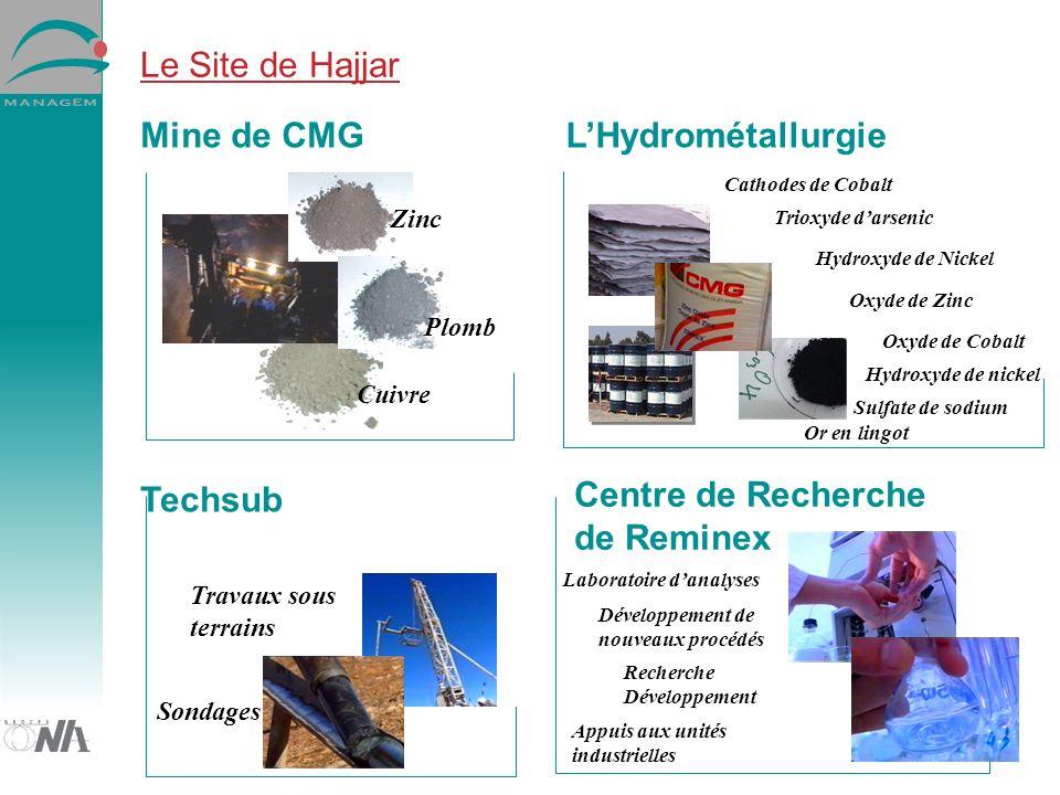 Le Site de Hajjar Zinc Plomb Cuivre Mine de CMG Centre de Recherche de Reminex Techsub LHydrométallurgie Cathodes de Cobalt Oxyde de Zinc Trioxyde darsenic Hydroxyde de Nickel Oxyde de Cobalt Sondages Travaux sous terrains Laboratoire danalyses Développement de nouveaux procédés Sulfate de sodium Hydroxyde de nickel Or en lingot Recherche Développement Appuis aux unités industrielles